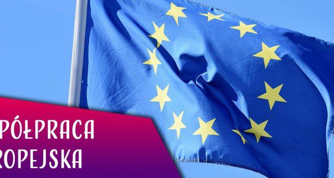 EU KONSULTACJE – SUBSYDIA ZAGRANICZNE NA JEDNOLITYM RYNKU